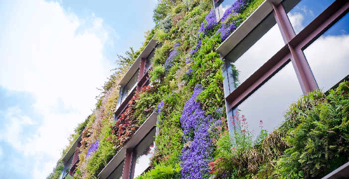 DENMARK, CLIMATE CHANGE AND SUSTAINABLE BUILDINGS